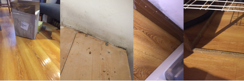 Wet floor, moldy and wet walls and mold on wooden table